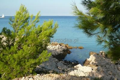 Chorwacja kwatery prywatne wrzesień baska voda chorwacja apartamenty